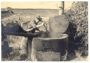 Arkiv billeder fra Fejø, Barkgryde