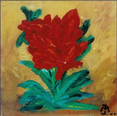 en smuk og fuldt udsprunget rose